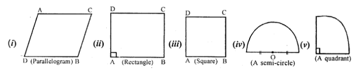 Middle School Mathematics Class 6 Solutions - Revision Exercise Symmetry (Including Constructions on Symmetry)-10