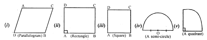 Selina Concise Mathematicsclass 6 ICSE Solutions - Revision Exercise Symmetry (Including Constructions on Symmetry)-10