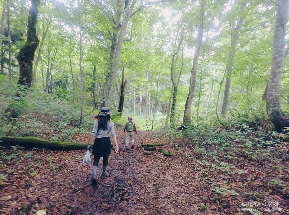 20181018   行走在日本東北   治癒之森的一堂生命課程,健行在自然首都的福島只見町 13.jpg
