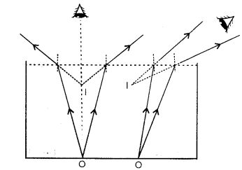 NCERT Solutions for Class 12 physics Chapter 9.29