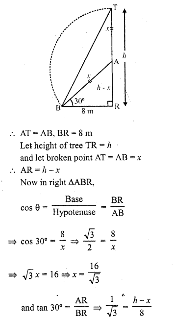 RD Sharma Class 10 Solutions Chapter 12 Heights and Distances Ex 12.1 - 19