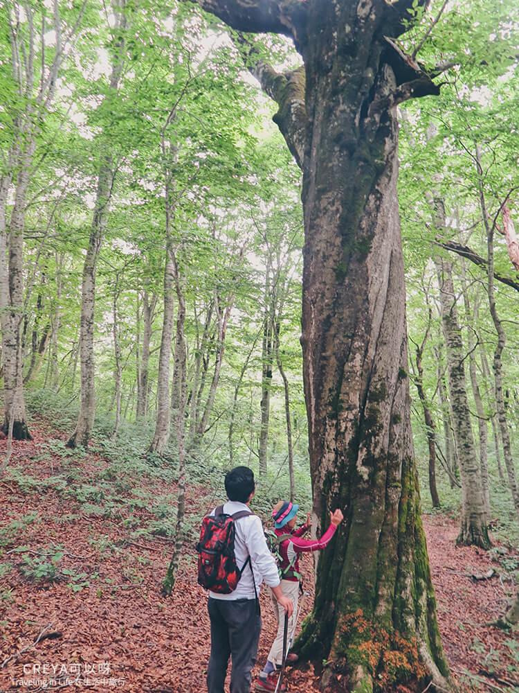 20181018 | 行走在日本東北 | 治癒之森的一堂生命課程,健行在自然首都的福島只見町 19.jpg