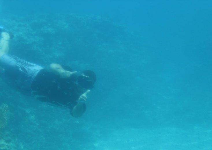 Human fish in the Red Sea, Aqaba