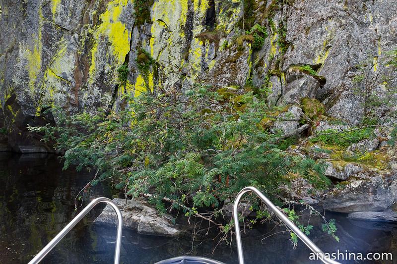 Около скалы, остров Каарнетсаари, Ладожское озеро