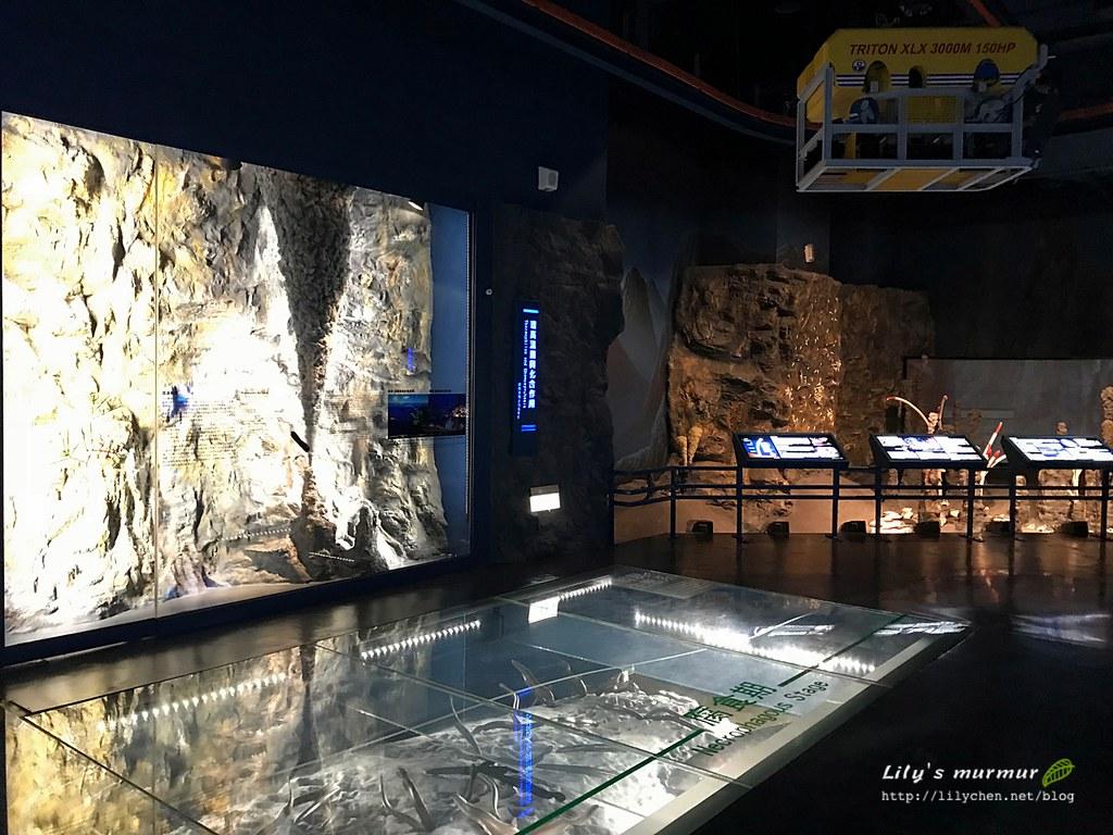 深海館展廳內一景,非常有實境的Fu哦!