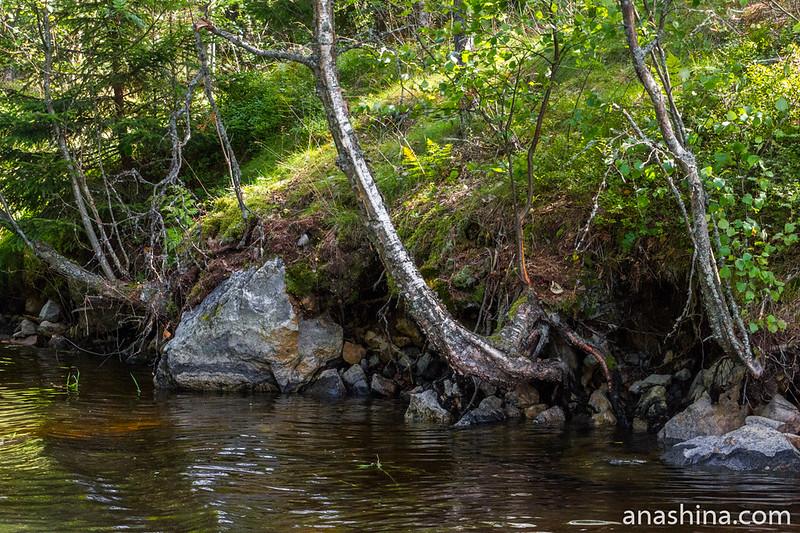 Скалистое основание острова, Ладожское озеро
