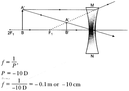 CBSE Sample Papers for Class 10 Science Paper 5 11