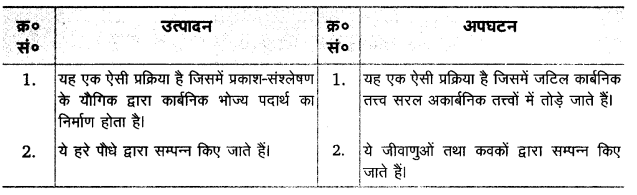 UP Board Solutions for Class 12 Biology Chapter 14 Ecosystem Q.6.3