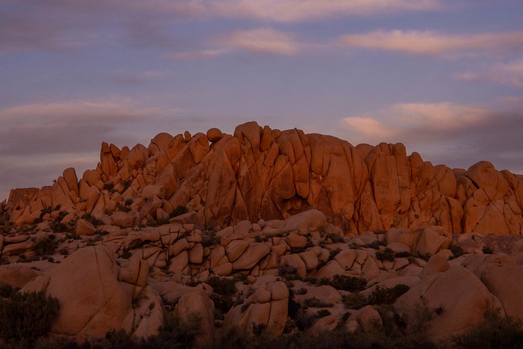 11.22. Joshua Tree National Park