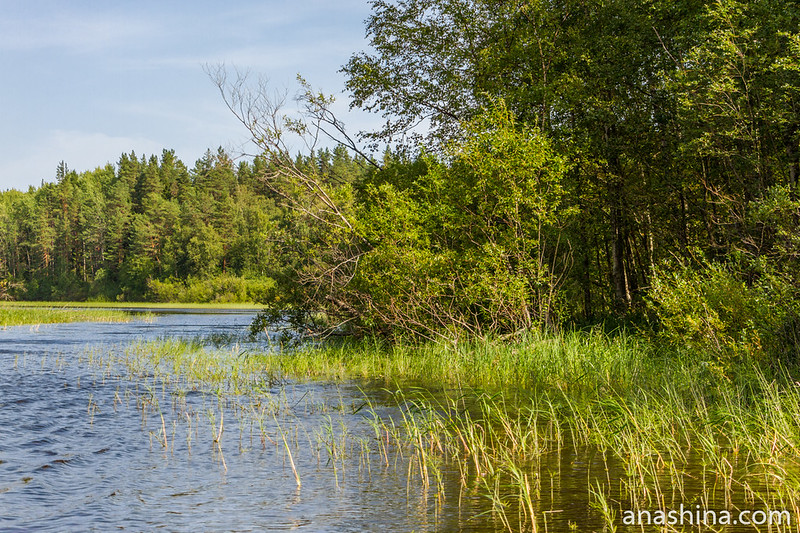 Узкая протока между островами, Ладожское озеро