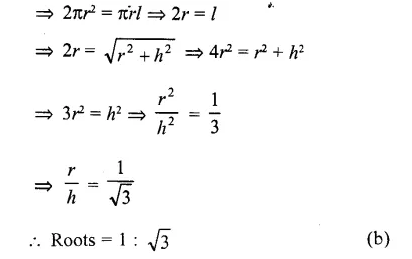 RD Sharma Class 10 Solutions Chapter 14 Surface Areas and Volumes MCQS 3