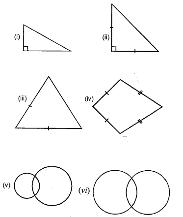 Selina Maths For Class 6 ICSE Solutions - Revision Exercise Symmetry (Including Constructions on Symmetry)-3