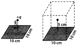 NCERT Solutions for Class 12 Physics Chapter 1 Electric Charges and Fields 15