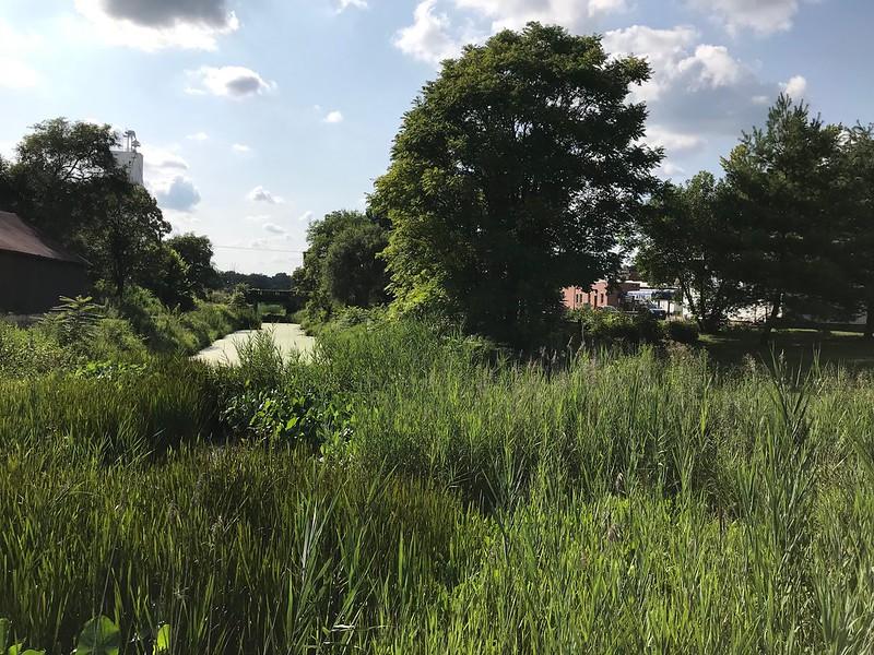 The Illinois & Michigan Canal remnant in Utica, Illinois