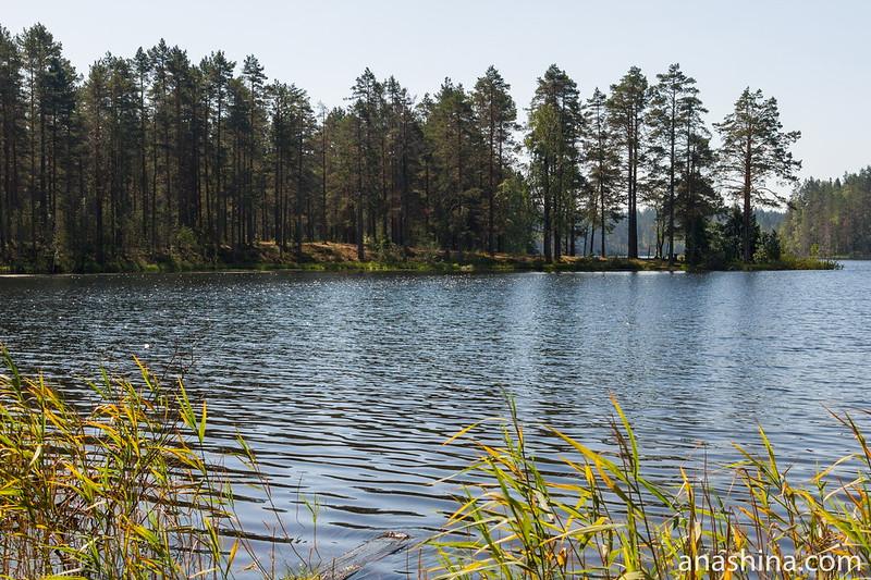 Озеро Саариярви, Карелия