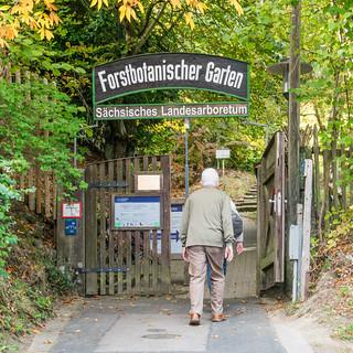 Forstbotanischer Garten Tharandt
