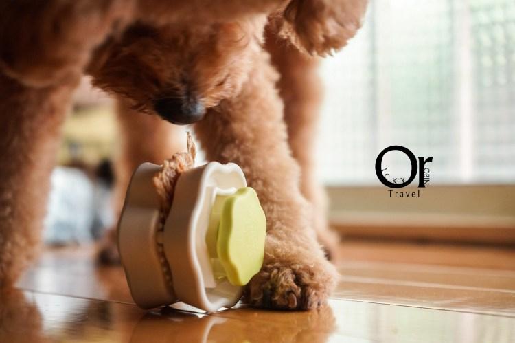 寵物用品開箱|YOGI FOOD CLIP,防止毛小孩狼吞虎嚥的救星,狗寶貝食物夾夾樂