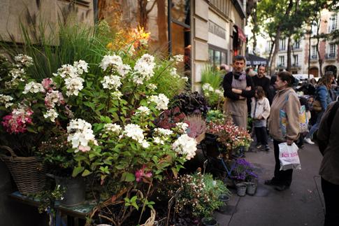 18i29 Rue Caulaincourt_0050 variante Uti 485