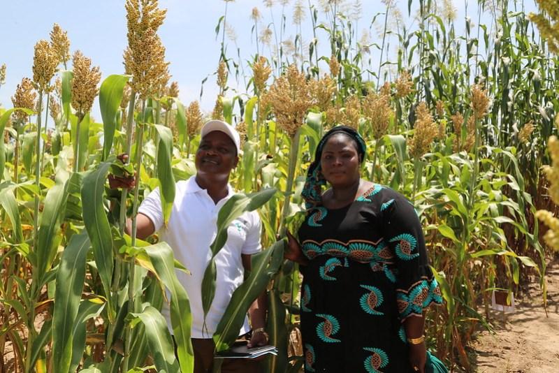 Baloua Nebie and Mme. Aminata Coulibaly Tangara (MaliMARK Trust). Photo credit: Jonathan Odhong/IITA.
