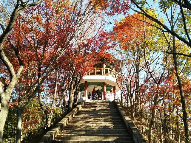 4a. Naejangsan National Park