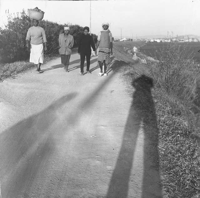 Ladies Walking
