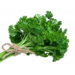 parsley-in-a-bunch
