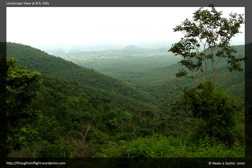 BRHills-Landscape1