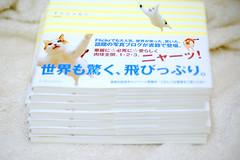 Junku的書_4385