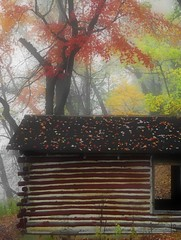 Cabin and Fog