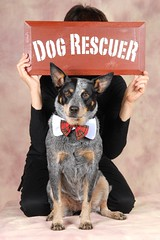 "~My ""Rescued"" Dog~ by Red~Star"