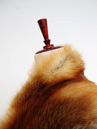 bara baras - fox collar