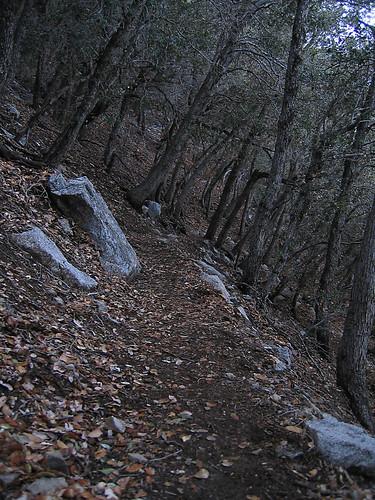 San Gabriel Peak 10