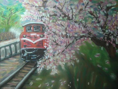 阿里山櫻花1