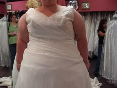 NOT THE DRESS