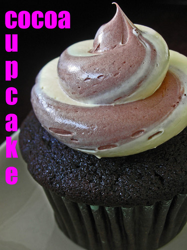 cocoa cupcakes with zebra frosting