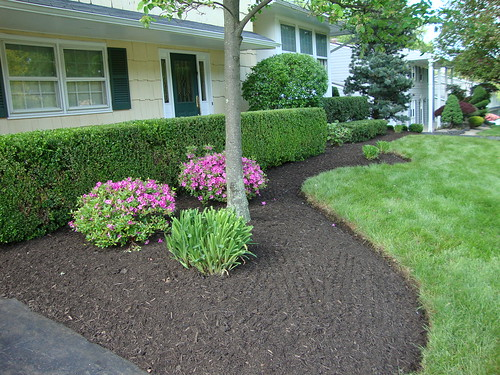 Spring Clean-up:  Front Left