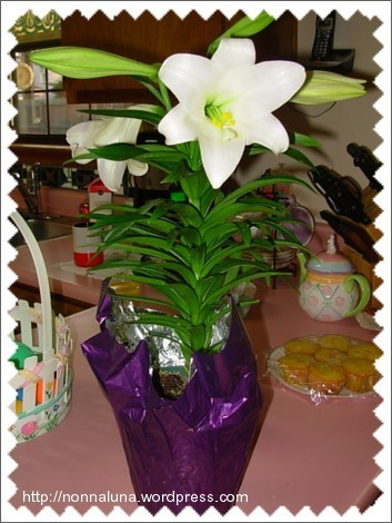 Easter Lily from Tom