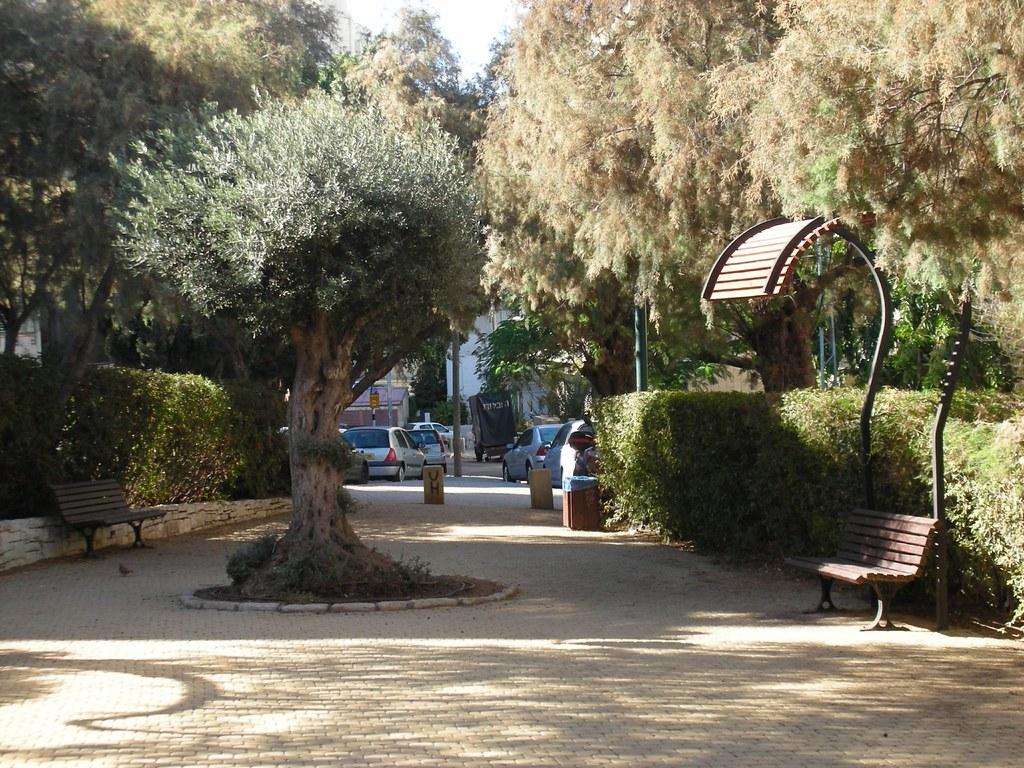 הגינה ברחוב חיסין