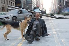 perro y smith
