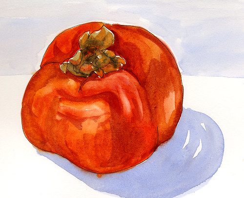 What is a Persimmon #1 (watercolor)