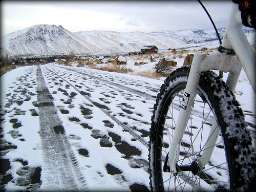 Winter Bike Path