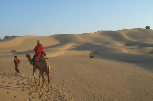 騎駱駝1-27