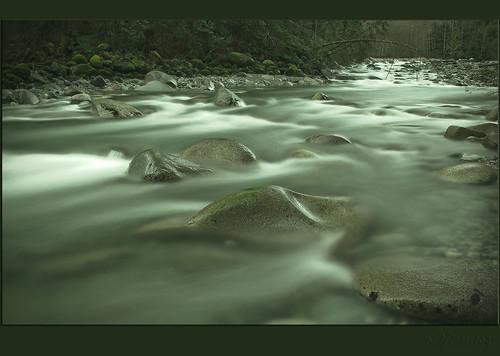 Silver Stream by janusz l