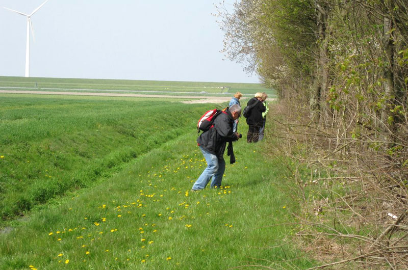 wandeling-IMG_0183