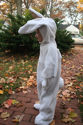 Halloween Bunny, in profile