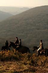 the deer hunt, dunkery, exmoor