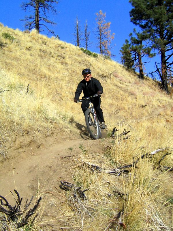 The Creek Trail