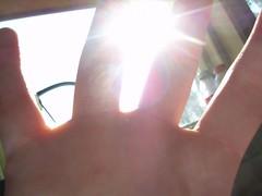 Sun Slipping Through