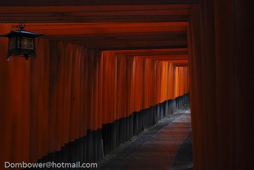 10000 gates in japan
