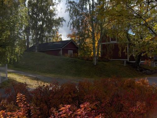 Serene Autumn Scene